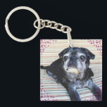 "Bumblesnot keychain: &quot;Rescue&quot; is the best breed! Keychain<br><div class=""desc"">Double-sided keychain with Bumble&#39;s regal looks on one side and &quot;Rescue is the best breed!&quot; on the back. We donate all proceeds to pet rescue.</div>"