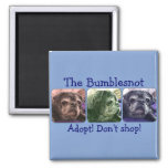 Bumblesnot magnet:  Color Me Bumble 2 Inch Square Magnet