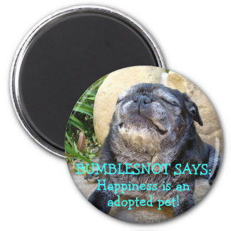 Bumblesnot magnet: Happiness is an Adopted Pet! 2 Inch Round Magnet