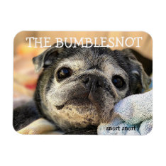 Bumblesnot Magnet: Snort Snort Magnet at Zazzle