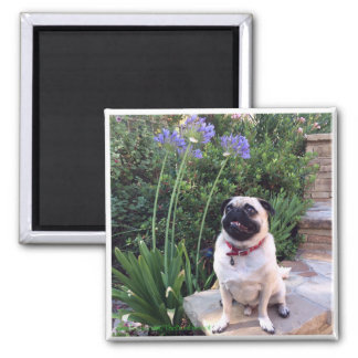 Bumblesnot magnet: The Kid outdoors 2 Inch Square Magnet
