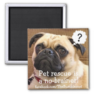 Bumblesnot magnet: The Kid/Pet rescue no-brainer! Magnet