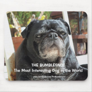 "Bumblesnot ""Most Interesting"" mousepad"