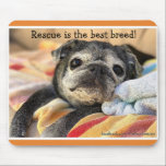 "Bumblesnot mousepad: Rescue is the best breed! Mouse Pad<br><div class=""desc"">Bumblesnot wants to help you surf the web with this cute mousepad!  All proceeds go to pet rescue!</div>"