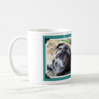 Bumblesnot Mug: Happiness is an Adopted Pet Classic White Coffee Mug