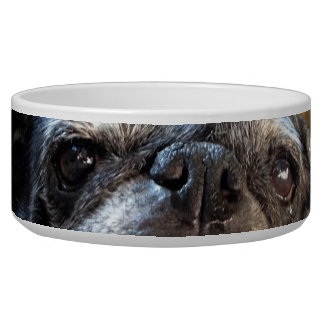 Bumblesnot Pet Food Bowl