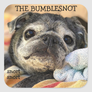 Bumblesnot stickers: snort snort square sticker