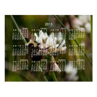 Bumbling in the Clover; 2013 Calendar Postcard