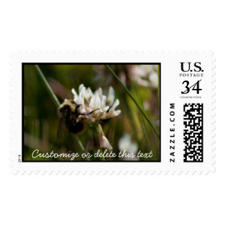 Bumbling in the Clover; Customizable Postage