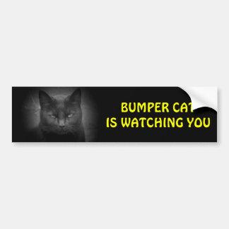Bumper (Black) Cat is watching Bumper Sticker
