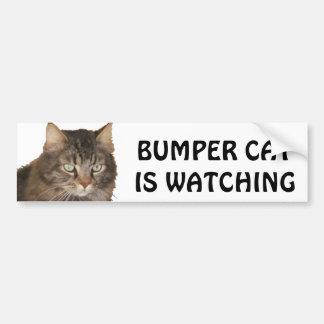 Bumper Cat is watching Bumper Sticker