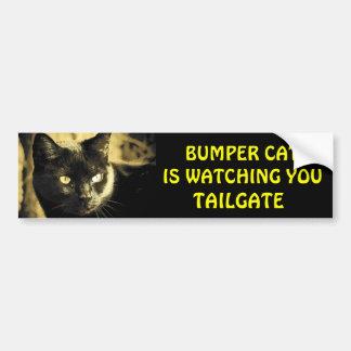 Bumper Cat is watching TAILGATE 16 Car Bumper Sticker