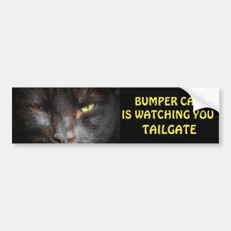 Bumper Cat is watching TAILGATE 19 Bumper Sticker