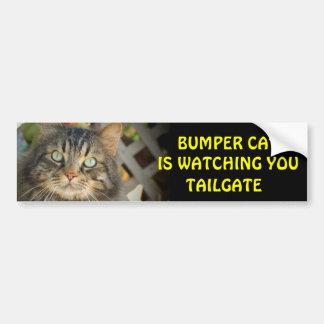Bumper Cat is watching TAILGATE 20 Bumper Sticker