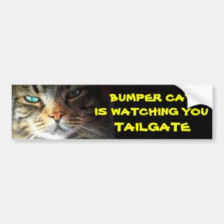 Bumper Cat is watching TAILGATE 21 Bumper Sticker