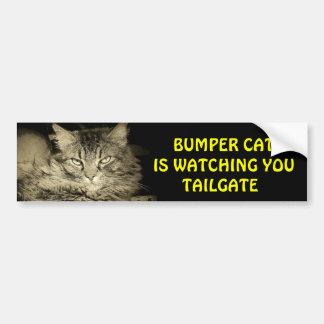 Bumper Cat is watching TAILGATE 24 Bumper Sticker
