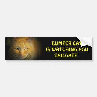 Bumper Cat is watching TAILGATE 25 Bumper Sticker