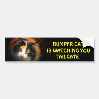 Bumper Cat is watching TAILGATE 26 Bumper Sticker
