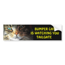 Bumper Cat is watching TAILGATE 2 Bumper Sticker