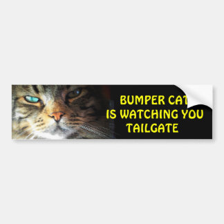 Bumper Cat is watching TAILGATE 2 Bumper Stickers