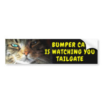 Bumper Cat is watching TAILGATE 42 Chewy Font Bumper Sticker