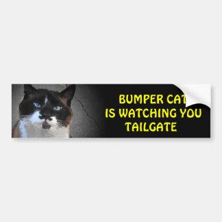Bumper Cat is watching TAILGATE Bumper Sticker