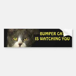 Bumper Cat is watching you 3 Car Bumper Sticker