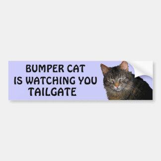 Bumper Cat is watching You TAILGATE 10 Bumper Sticker