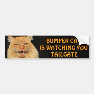 Bumper Cat is watching you TAILGATE 13 Bumper Sticker