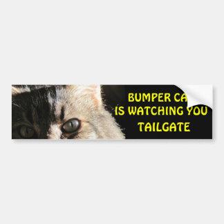 Bumper Cat is Watching You TAILGATE 5 Bumper Sticker
