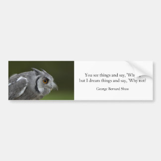 Bumper Sticker - Baby Grey Owl with quote