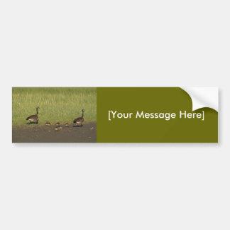 Bumper Sticker / Canada Geese Family