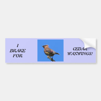 Bumper Sticker for Bird Lovers!