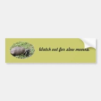 Bumper Sticker, Gopher Tortoise Bumper Sticker