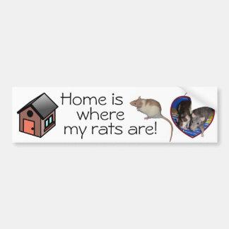 Bumper Sticker: Home is where my rats are! Car Bumper Sticker