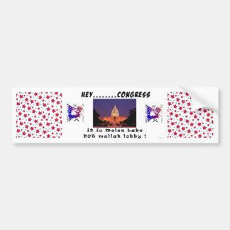 Bumper Sticker - Molon Labe not Mullah Lobby