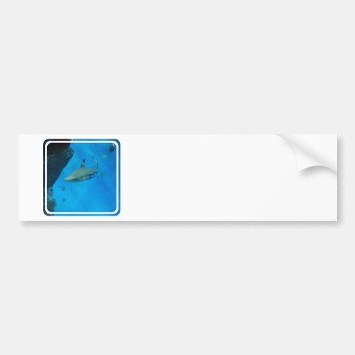 Bumper Sticker Template - Customized