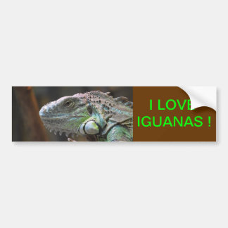 Bumper Sticker with head of Iguana lizard