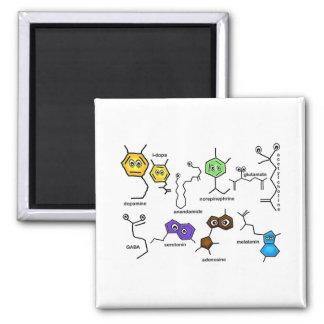 Bumpy Neurotransmitters Magnet