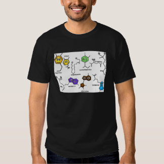Bumpy Neurotransmitters Shirt