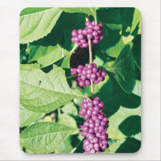 Bunch o' Berries Mouse Pad