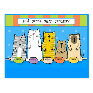 Bunch o' Cute Cats Want Treats Calendar Postcard