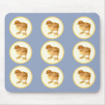Bunch Of Baby Chicks Mousepad