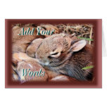 Bunch of Bunnies-any occasion-customize Greeting Cards
