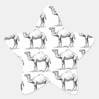bunch of camels herd star sticker