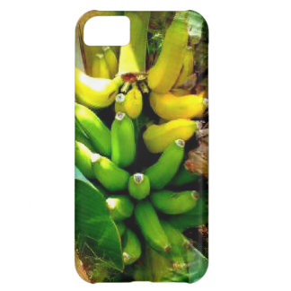 Bunch of delicious yellow and green bananas iPhone 5C case