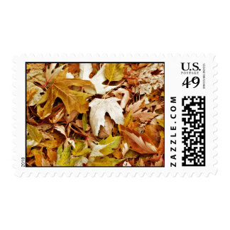Bunch Of Dry Autumn Leaves Postage Stamps