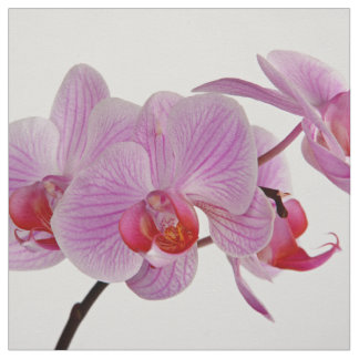 Bunch Of Elegant Pink Orchids Fabric