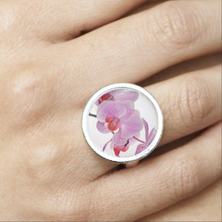 Bunch Of Elegant Pink Orchids Photo Rings