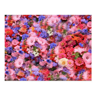 Bunch Of Flowers Postcard